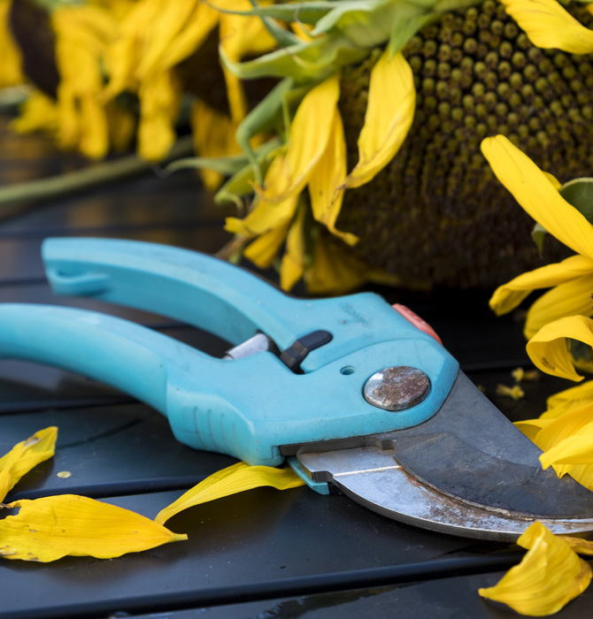 Pliers for cutting branches